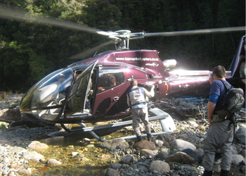 helicopter fishing nz